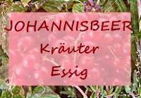 16613986-Zitronenmelisse-Lavendel-Rosmarin-Salbei-Minze-Estragon-Borretsch--Lizenzfreie-Bilder